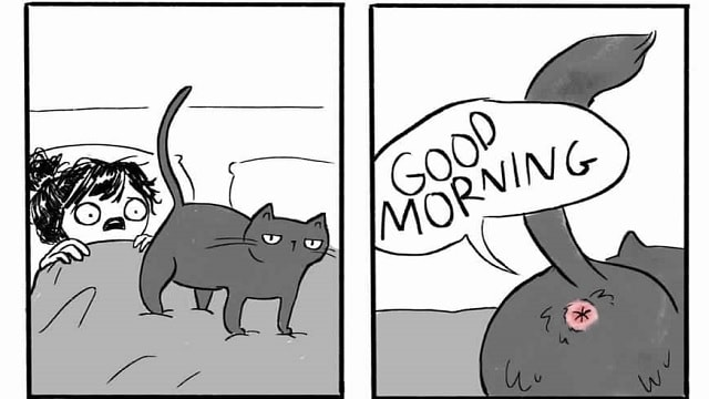Artist 'Purr-fectly' Illustrates What It's Like to Live with a Cat!