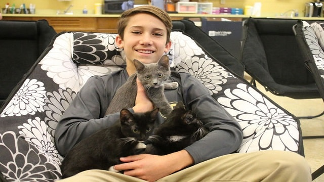 8th-grader Rescues Freezing Kittens From …