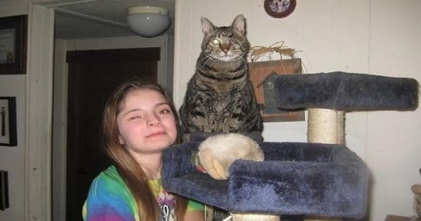 Girl and Cat Share Special Bond – And Have Become …