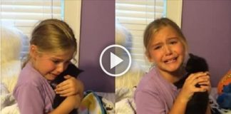 Young Girl Bursts into Tears When She Gets Her New Kitty and So Will You!