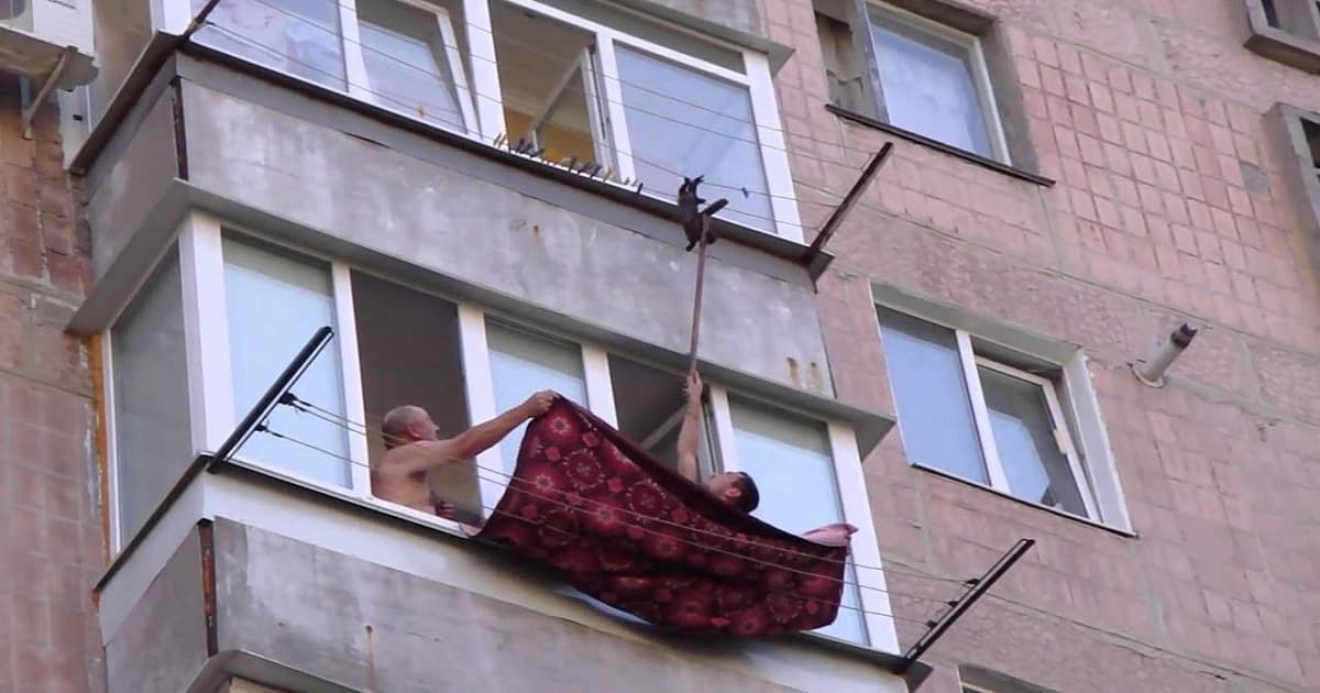 Men Rescue Tiny Kitten Hanging on Clothesline!