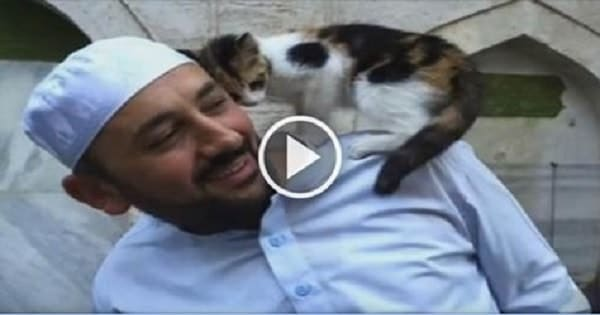 Generous Man Opens Mosque Doors for Stray Cats and Melts Hearts Worldwide!