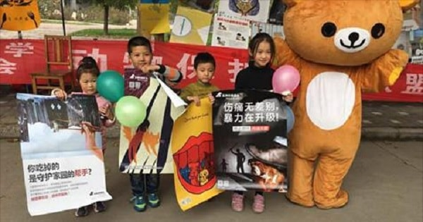Students Across China Stand Up to Dog and Cat Meat Trade With Moving Poster Project