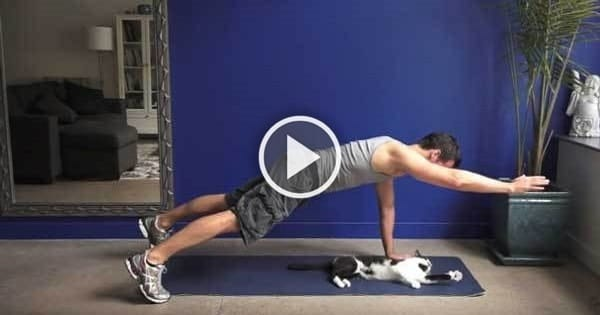 Trying to Exercise with Cats Around – This Clip Will Make You Smile!
