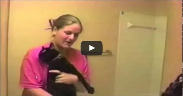 Cat Simply Does NOT Want a Bath and Is Not Afraid To Say So!