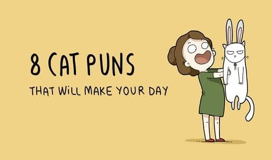 These 8 Cat Puns That Will Truly Make Your Day