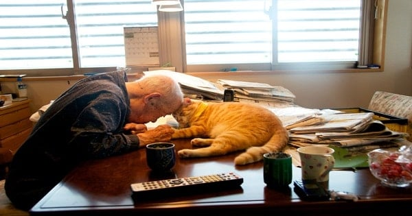 Depressed And Sick, A Grandfather's Life Is Completely Transformed By …