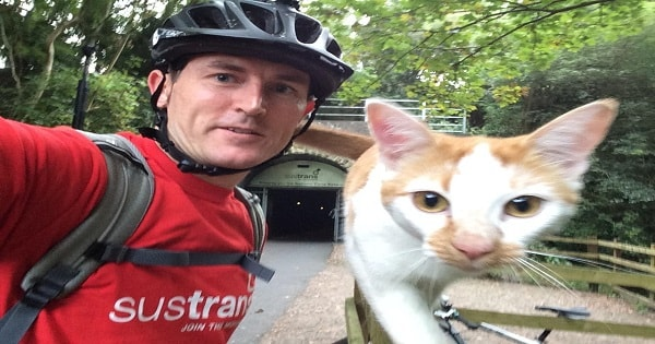 Friendly Cat Approaches Cyclist In The Most Adorable Way