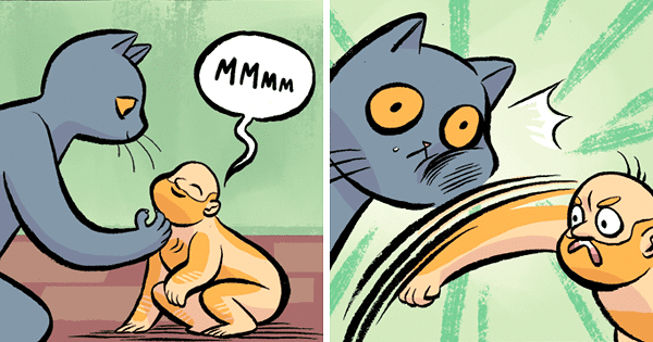 16 Funny Comics Showing What Would Happen If You And Your Cat Traded Places