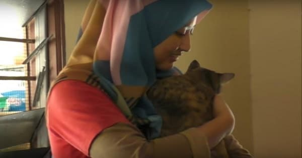 Despite Criticism From Her Community, This Muslim Woman Refuses to Stop Caring for Stray Animals