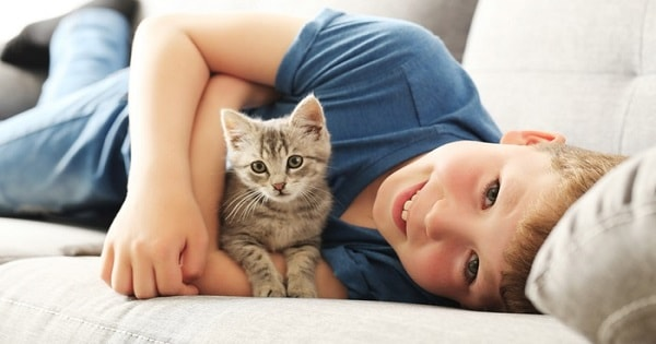 Is Having A Cat Beneficial To Your Kid's Health – The Truth Revealed