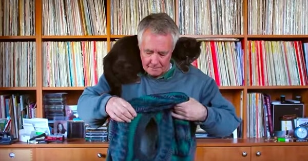 Man Masterfully Demonstrates How To Put On A Sweater Without Disturbing Your Cat