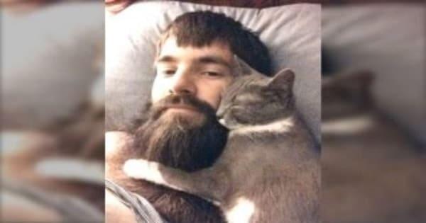 Cats Who Really Like Men With Beards