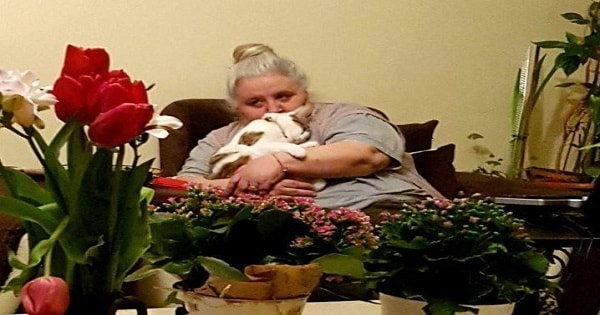 Cat With No Tail Insists On Being With Sad Grandma Who Never Liked Cats, But Then …
