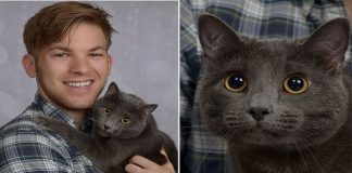 Man Simply Wanted Nice Pictures Of Him And His Cat, But He Never Expected THIS ...