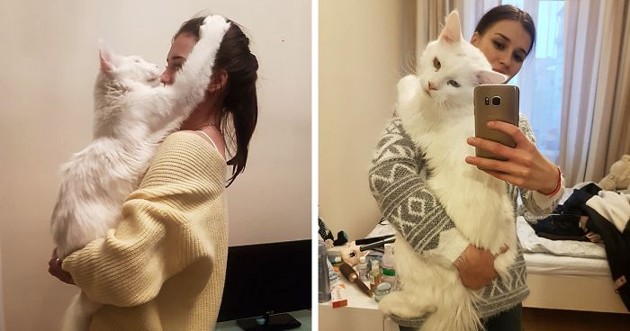 Kitty Who Grew Up Hugging His Human Every Day Won't Stop Even After Becoming …