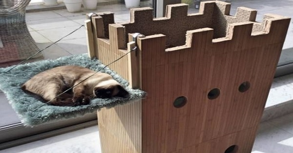 Man Builds This Cat Castle For His Furry Princess And It's Simply Purr-fect