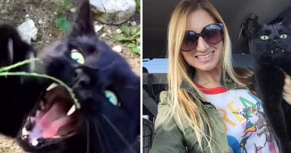 After Father And Friend Died, This Woman Found Happiness After Adopting This Vampire Cat …