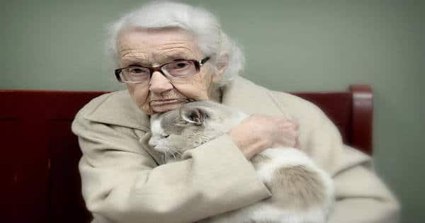 20+ Of The Oldest Kitty Cats Adopted By People With Some Of The Biggest Hearts