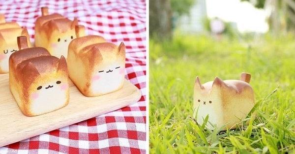 Warmly 'Baked' Breadcat