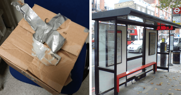 Man Opened Box Abandoned At Bus Terminal In Direct Sunlight And Discover The Saddest Surprise You Can Imagine