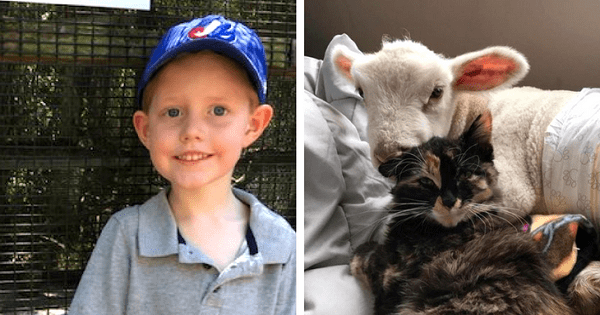 Kind-hearted 5-Year-Old-Boy Starts A Lemonade Stand To Help Animals In Need
