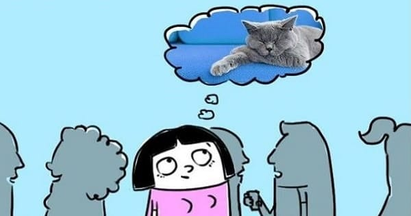 Comics That Truly Capture The Essence Of What It Means To Be A Cat Person