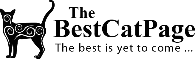 TheBestCatPage