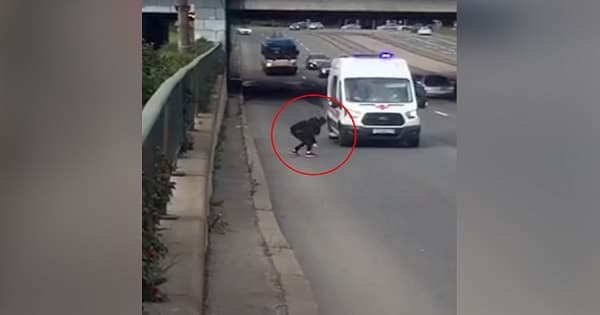 Girl Risks Own Life To Rescue Kitten On Highway – This Clip WILL LEAVE YOU BREATHLESS!