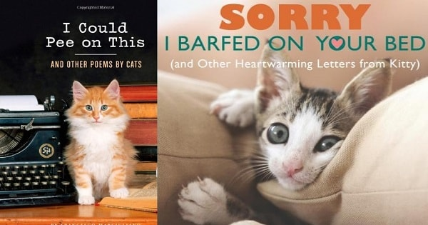 9 Truly Hilarious Cat Books Everyone Needs To Own!
