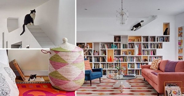 One Couple Redesigned Their Home To Make It The Purr-fect Place For Books … AND CATS!