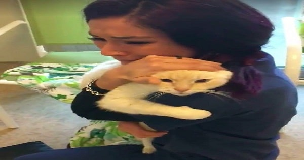 After Searching For Two Years For Diego, Woman Finds Her Missing Fur-baby - A Tearful Reunion!