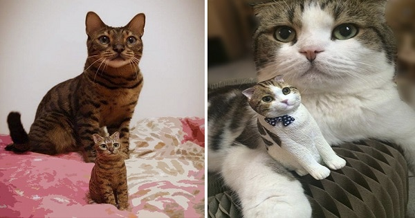 Artist Hand-Sculpts People's Cats To Immortalize Their Friendship