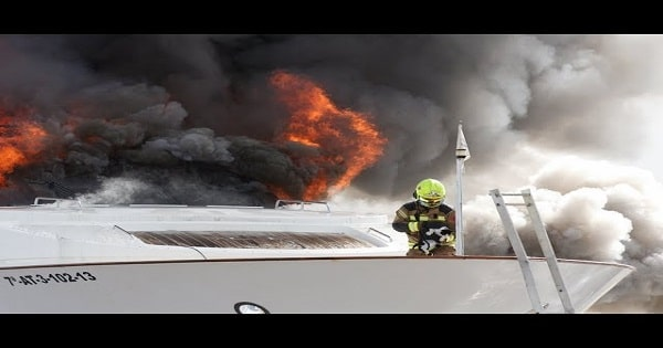 Confused Cat Refuses To Be Rescued From Burning Yacht!