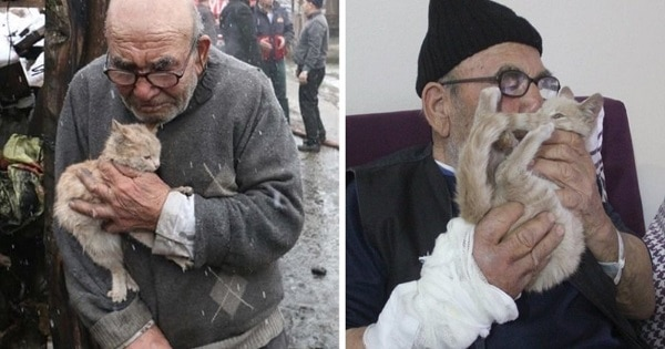 An Elderly Man Loses Everything He Has In A Fire, But His Best Friend Kitten Is There To Comfort Him!