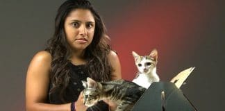 People Who Hate Cats Meet Kittens. Their Final Thoughts?