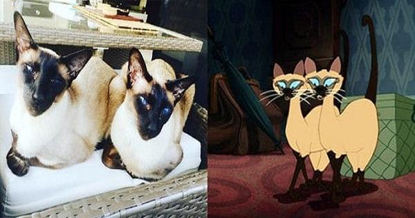 Doppelgangers Of Beloved Disney Characters