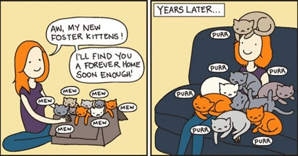 These 10 Hilarious Cat Comics Will Definitely Make Your Day!