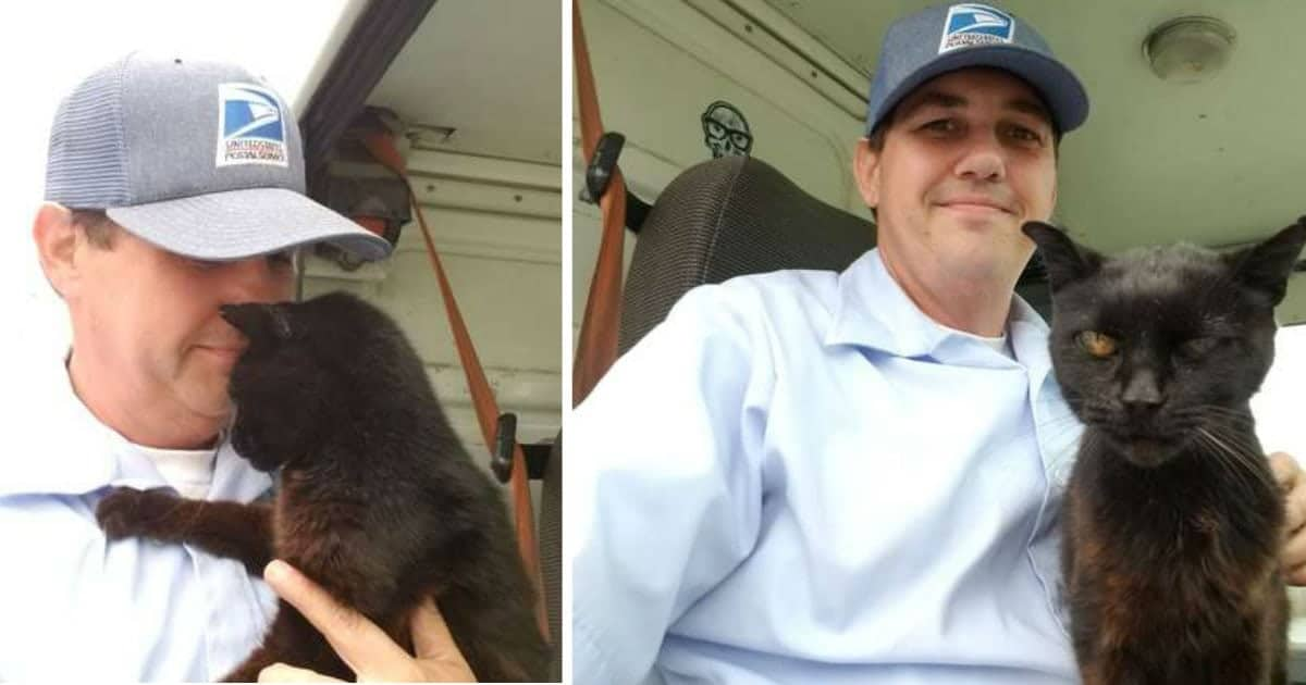 Elderly Cat Falls In Love With Her Mailman