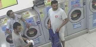 """Malaysian Police Arrests 2 Men Who """"Roasted"""" a Pregnant Cat in a Laundromat Dryer!"""