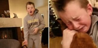 Boy Reunites With His Cat That Was Missing For 7 Months