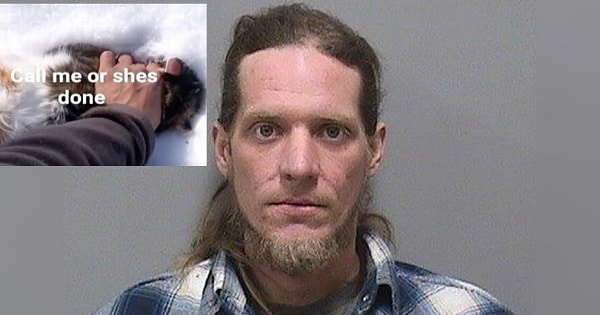 Iowa Man Arrested After Stealing and Torturing His Roommate's Cat