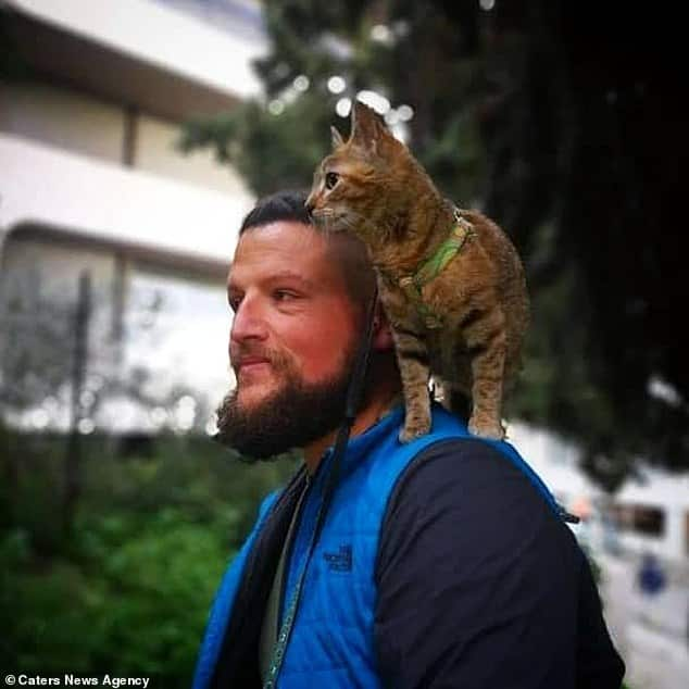 Cat travels the world on a bicycle after backpacker adopts the stray kitten 2