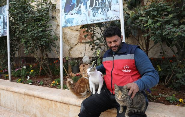 The Cat Man of Aleppo Returns to Syria to Look After the Animals 3