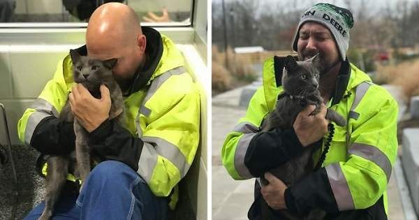 Trucker Finds His Best Travel Bud Cat After Months of Searching