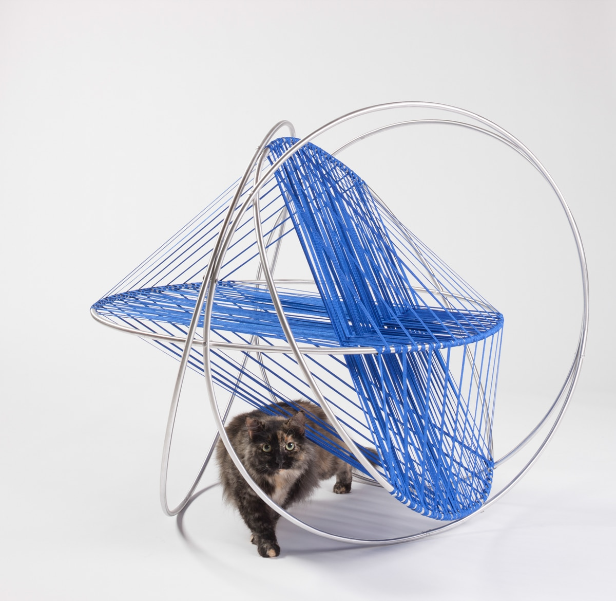 Outdoor Cat Shelters 4