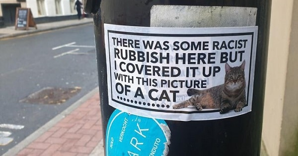 A Mysterious Manchester Lad Covers Racist Graffiti with Cat Stickers