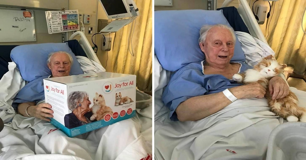 Family Gives Their Dad With Dementia A Robotic Cat