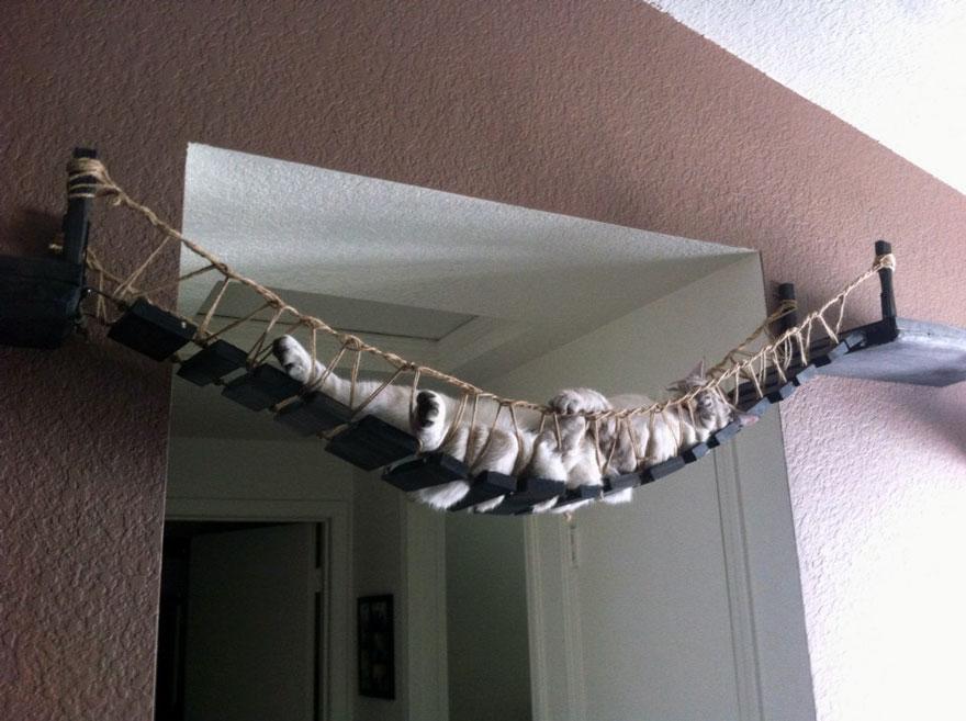 Modern Cat Furniture 3