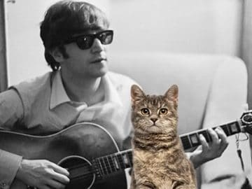John Lennon – The 60s Version of the Crazy Cat Lady